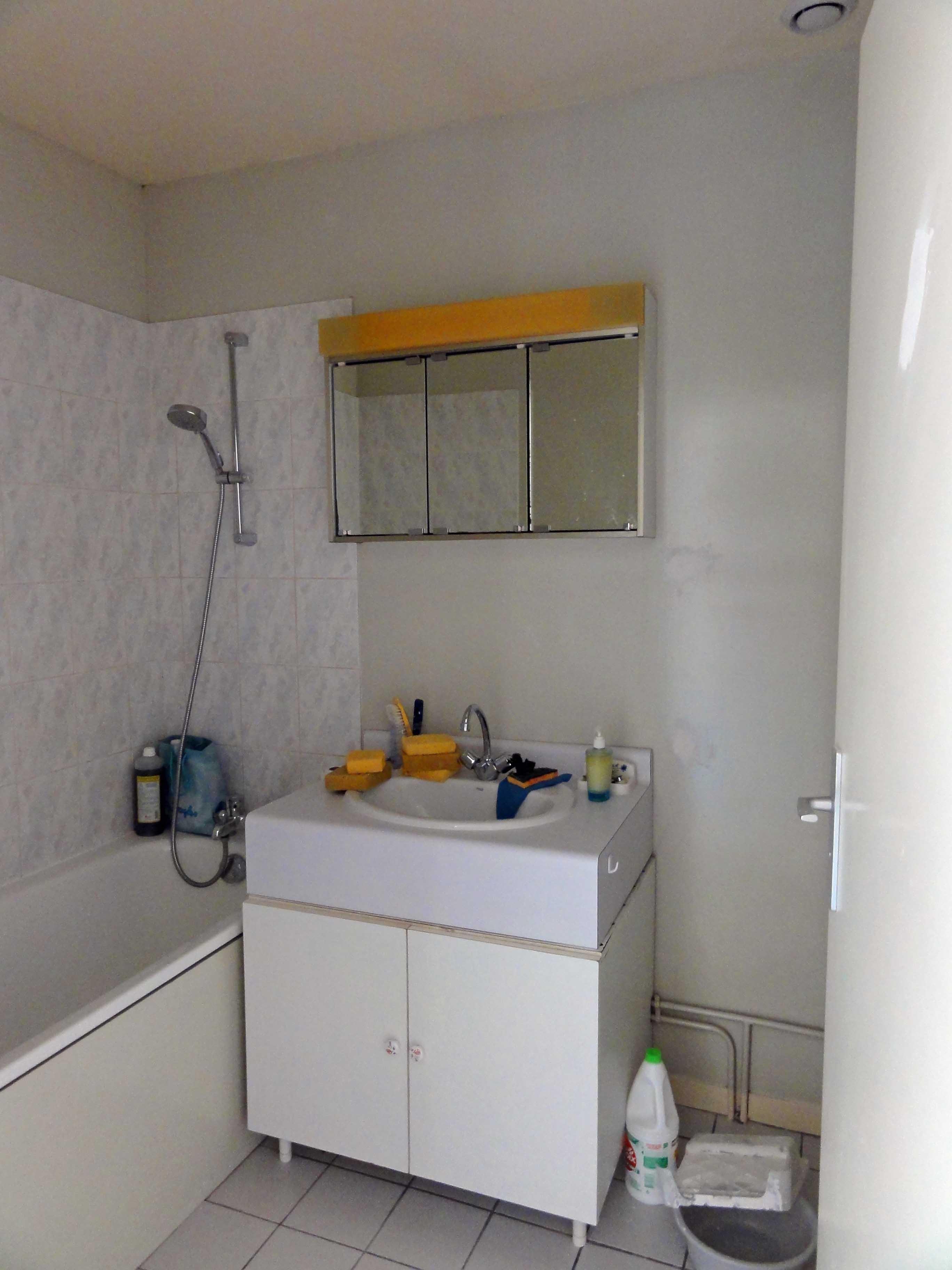 Avant les travaux, la porte battante (à droite) occupait 50% de l'espace libre au sol de la salle de bain avec baignoire.