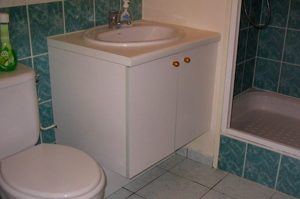 Salle de bain en l'état: saine et contemporaine