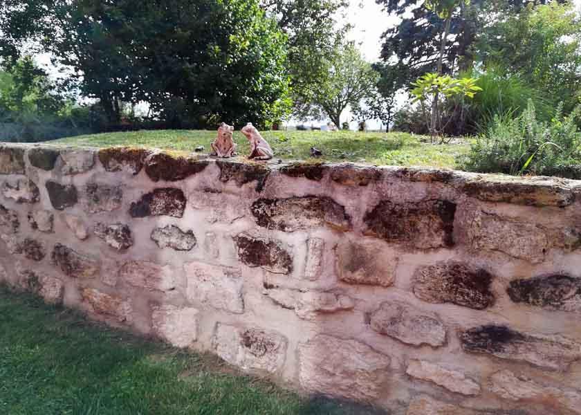 2 grenouilles posées sur le muret en pierre fini